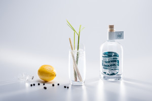 Gin Degustation bei gruppenevent.ch